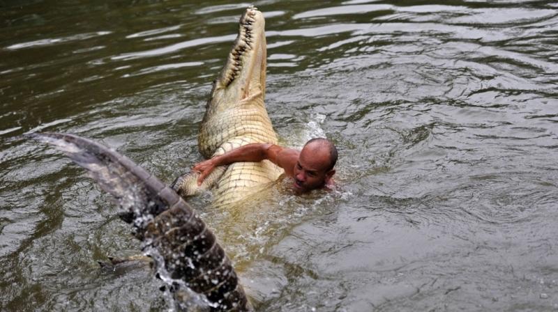 Dzhilberto Shedon i krokodil Pocho 3