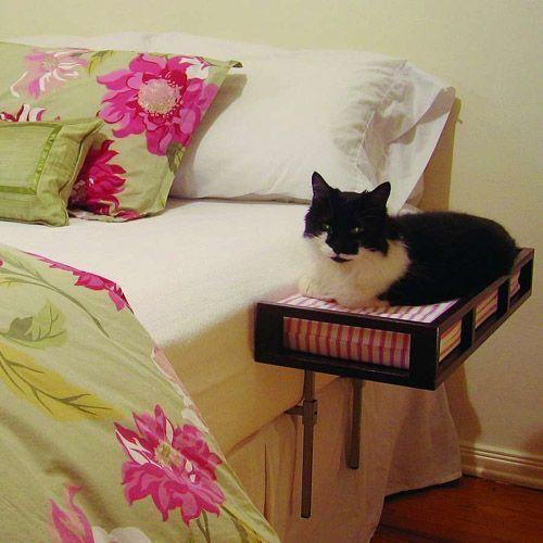 Прикроватная полочка с местом для кошки