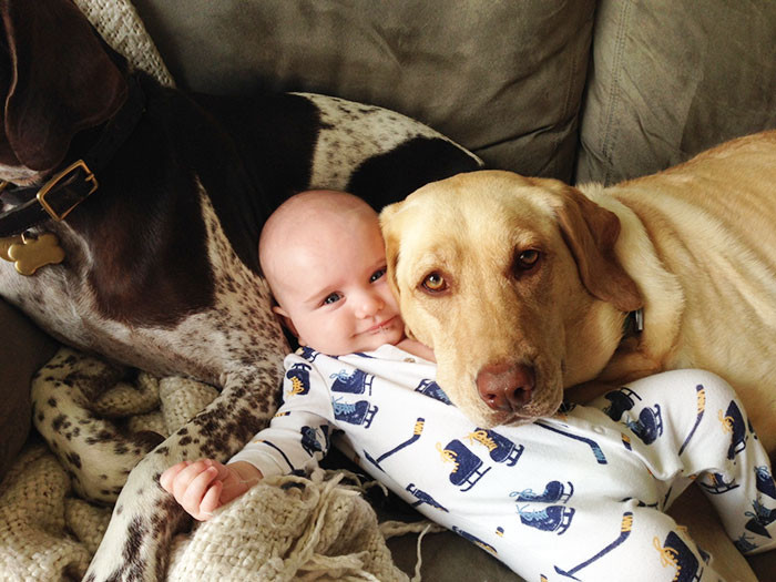 Две няньки  дружба, ребенок, собака