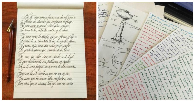 Искусство красивого письма: 50 примеров идеального почерка