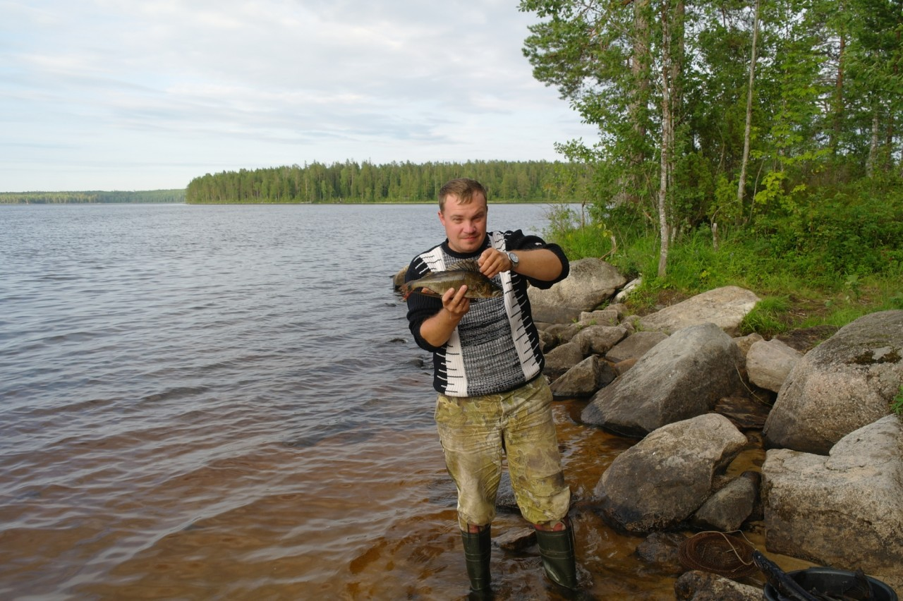водлозеро рыбалка где остановиться