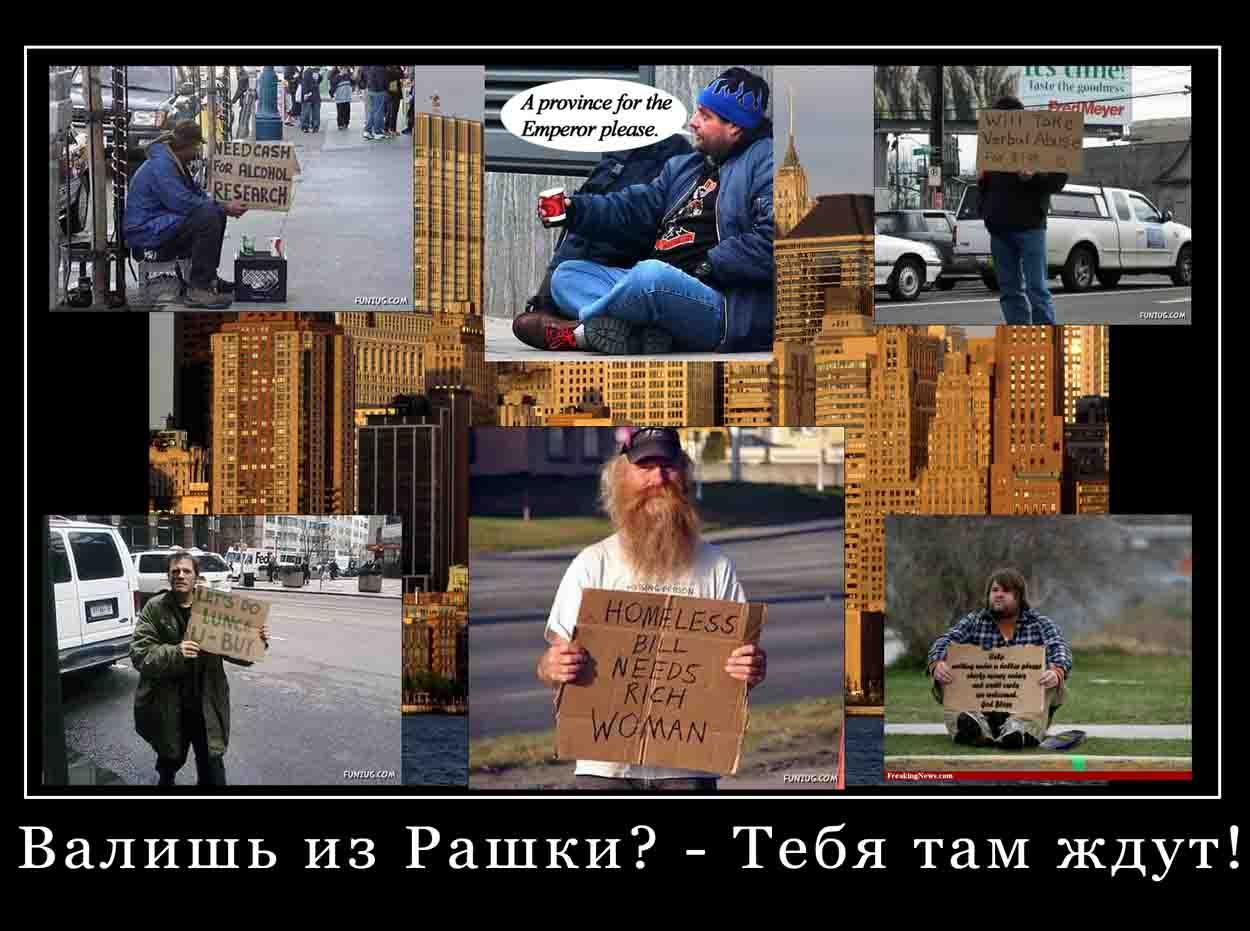 Веские причины  остаться в России.