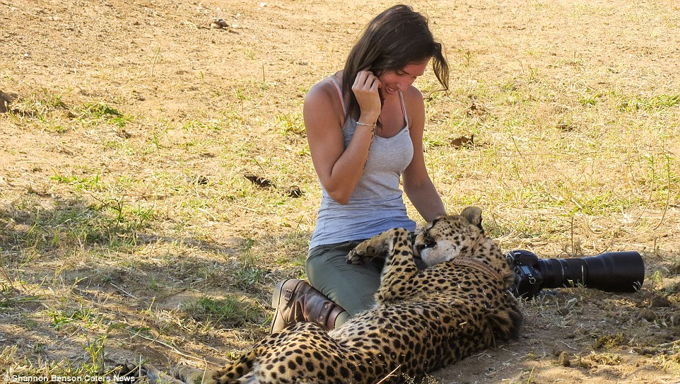 Brave girl-the photographer easily finds common language with wild animals 05