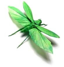 кузнечик зелененький..