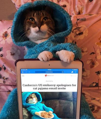 Приглашения на пижамную вече…