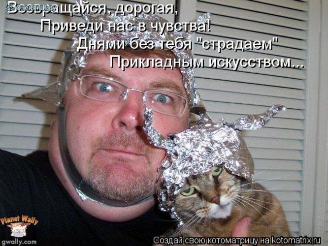 Юморная котоматрица 26