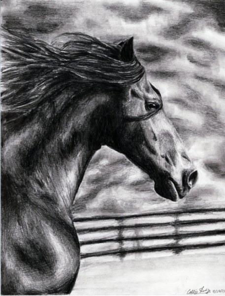 Реалистичные рисунки карандашом (17 работ)