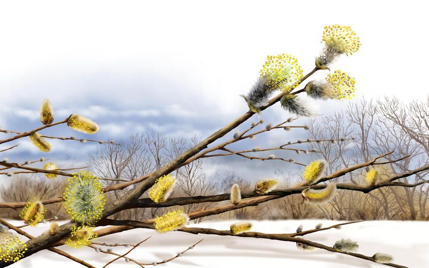 Яркие картины Елены Доведовой