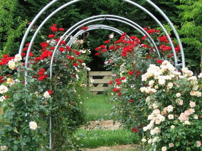 Арка для роз пошаговая инструкция с фото