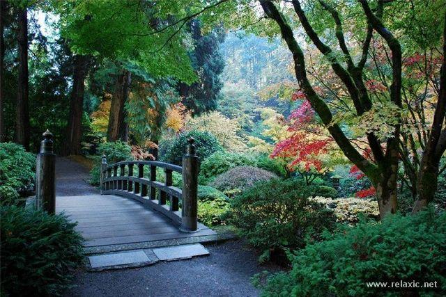 Japan-Park-015
