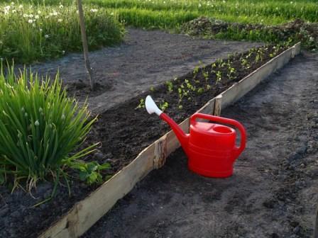 Календарь садовода и огородника на май 2015