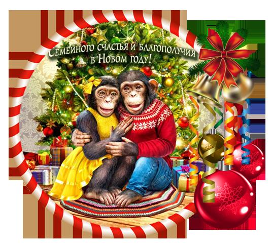 год обезьянки 2 (534x482, 459Kb)