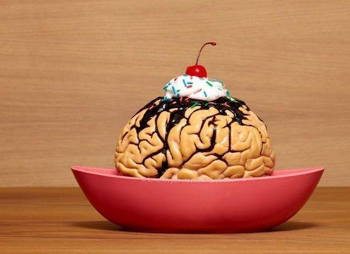 Познавательные факты о человеческом мозге