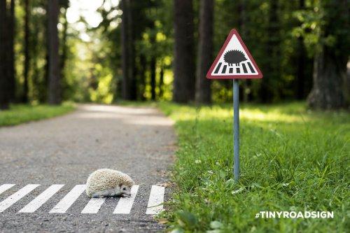 Крошечные дорожные знаки на …
