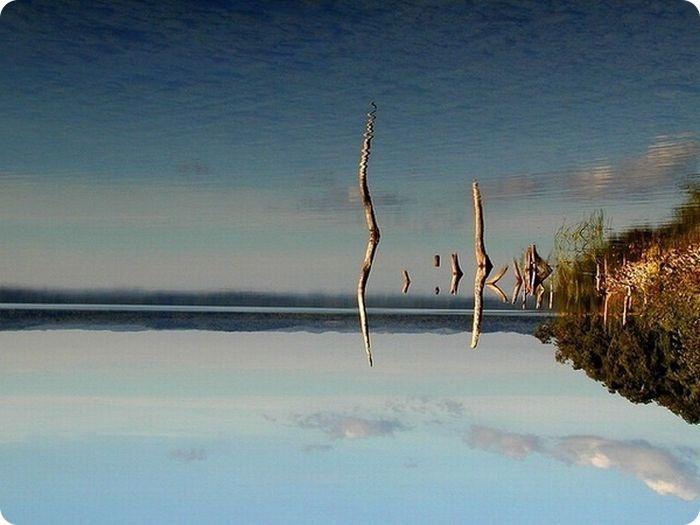отражение в воде природа 13 (700x525, 222Kb)