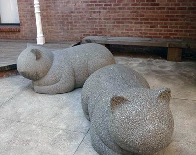Отдых кошек, Нью-Йорк, США.