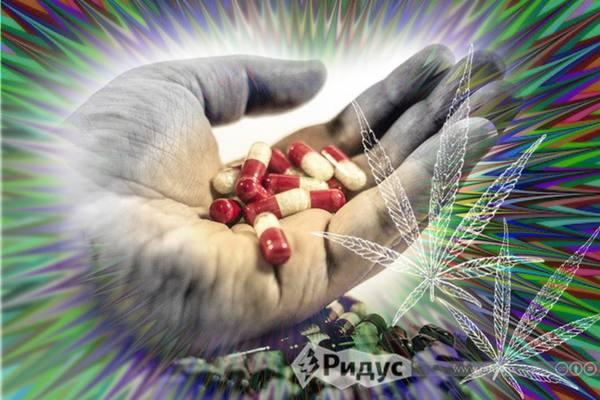 Почему некоторые люди склонны к наркозависимости
