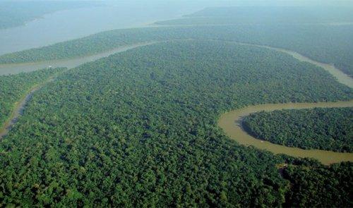 Топ-25: Невероятные факты про Амазонку, которые делают её уникальнейшим местом на Земле