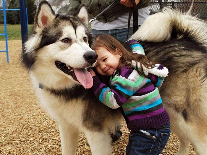 Только ее друг дружба, ребенок, собака