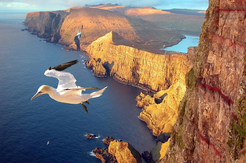 Сёрвагсватн — невероятное озеро, висящее над океаном