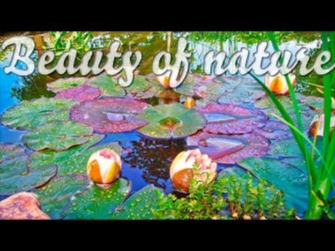 Потрясающе красивая природа - релакс и позитив! Музыкальное видео YouTube