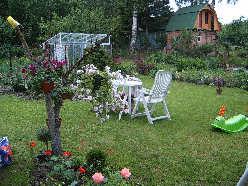 Дизайн садового участка 6 соток фото своими руками