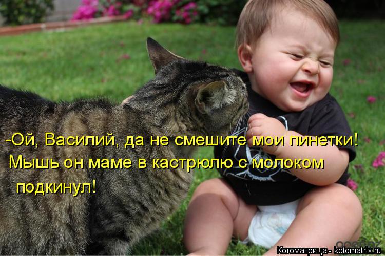 Котоматрица: -Ой, Василий, да не смешите мои пинетки! Мышь он маме в кастрюлю с молоком подкинул!