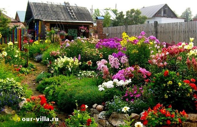 Цветочный мир прекрасен и огромен!
