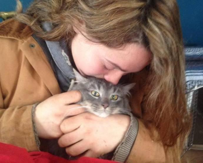 Водитель спас примерзшего к обочине дороги кота кошки, новости