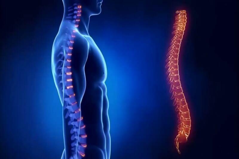 Как выровнять спину: 6 несложных упражнений