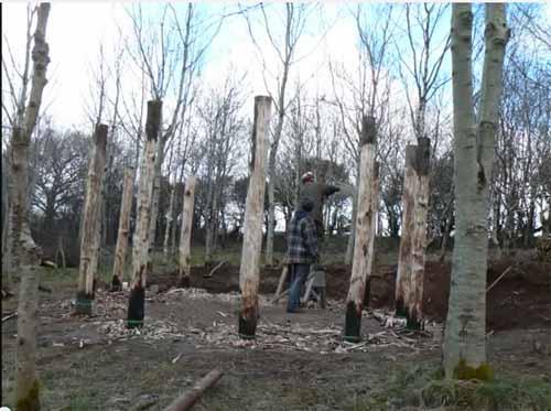 строительство круглого дачного дома своими руками