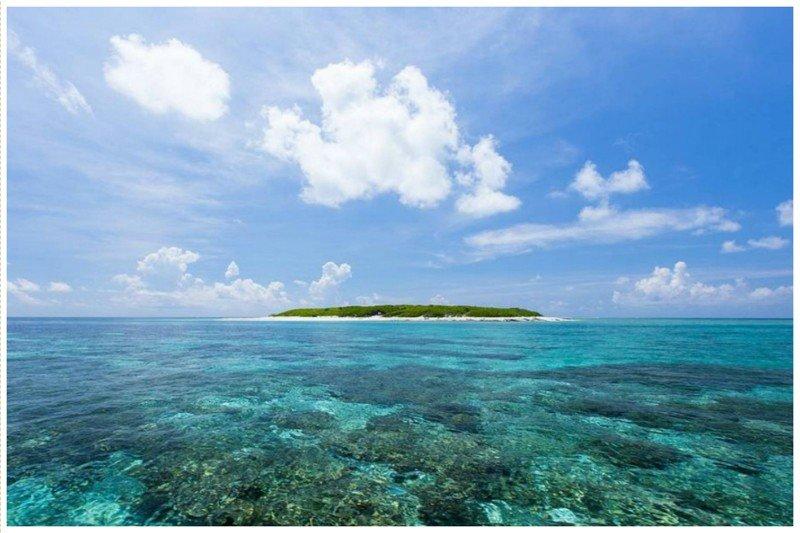Еще один остров, необитаемый по причине споров о его принадлежности - Остров Деревьев, Южно-Китайское море жизнь, земля, интересное, необитаемые острова, факты