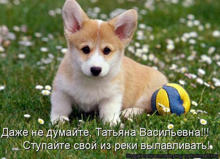 Котоматрица: Даже не думайте, Татьяна Васильевна!!! Ступайте свой из реки вылавливать!