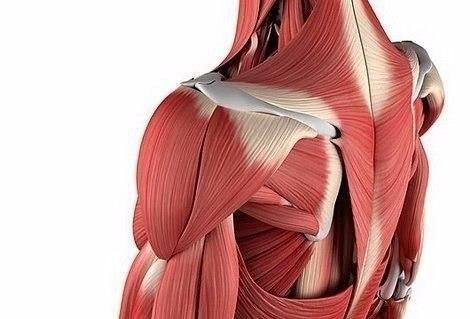 """Почему болят мышцы?! И как различить """"хорошую"""" и """"плохую"""" боль"""