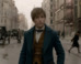 Watch The Magical New Trailer For 'Fantastic Beasts And Where To Find Them'