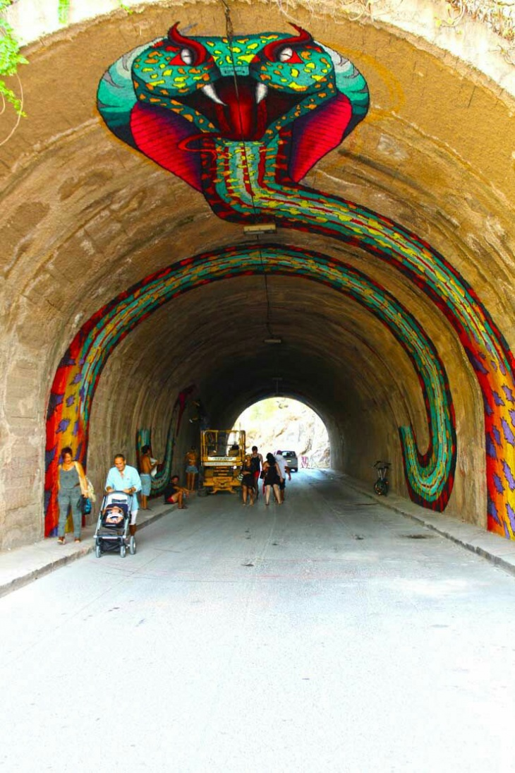 Змея в тоннеле