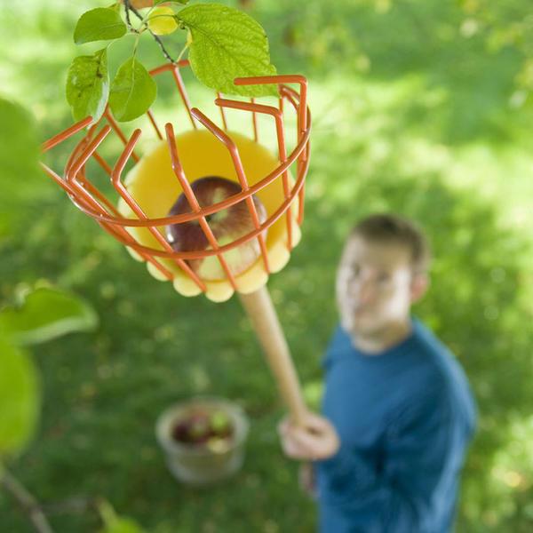 15 «друзей садовника»: полезные садовые изобретения, к которым стоит присмотреться