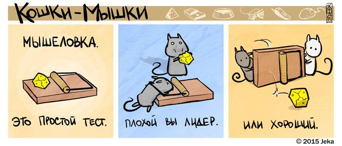 catsrats3