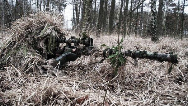 Виды снайперов