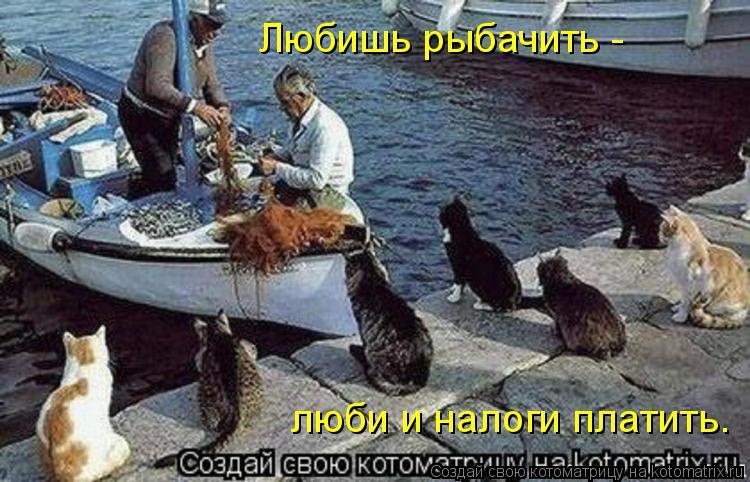 Котоматрица: Любишь рыбачить -  люби и налоги платить.
