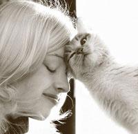 Самые популярные клички кошек в 2011г.