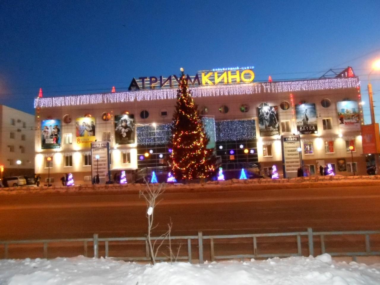 Омские городские елки (фото)