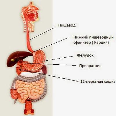 жжет желудок повышееная кислотность панели приборов ВАЗ
