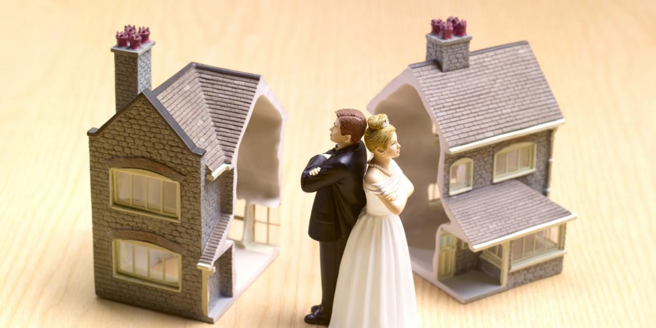 Семейные истории: Хитрая жена