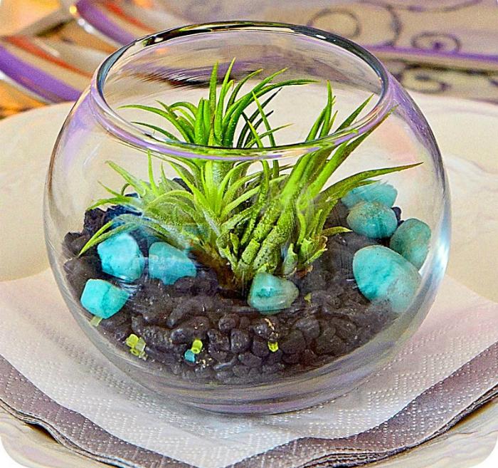 Флорариум с суккулентами, украшенный яркими камнями.