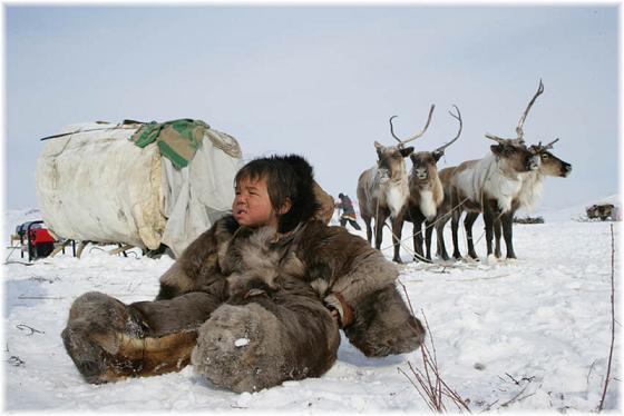 Армия заказала одежду, в которой можно спать на снегу при 60 градусах. У учёных не получилось