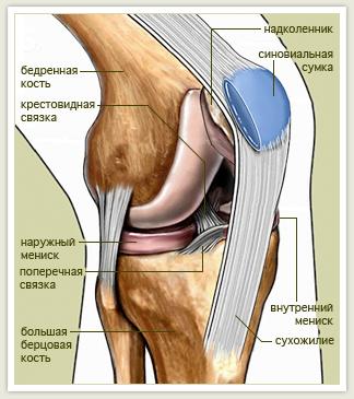 как выявить повреждение коленного сустава