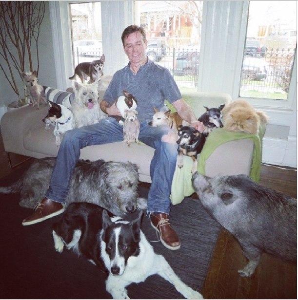 Мини Бикини и восемь спасенных псов