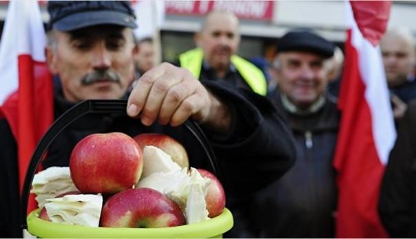 """Дружба за яблоки: почему Польша говорит Москве о """"добрых намерениях"""""""