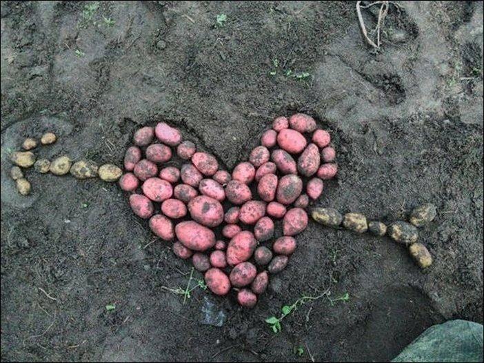 Вот такая вот сельская романтика! девушки, деревня, прикол, россия, село, фрики, чудаки, юмор